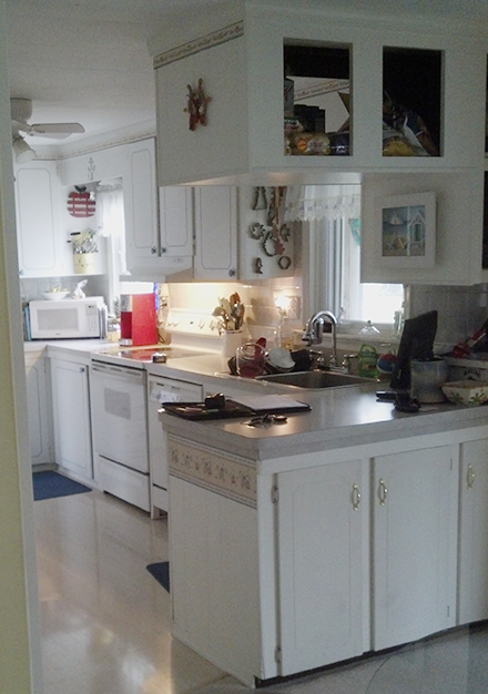 Kitchen Remodel In Stevensville Before
